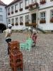 hildesheim2014 (01)