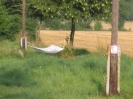 sommerlager2006 (07)